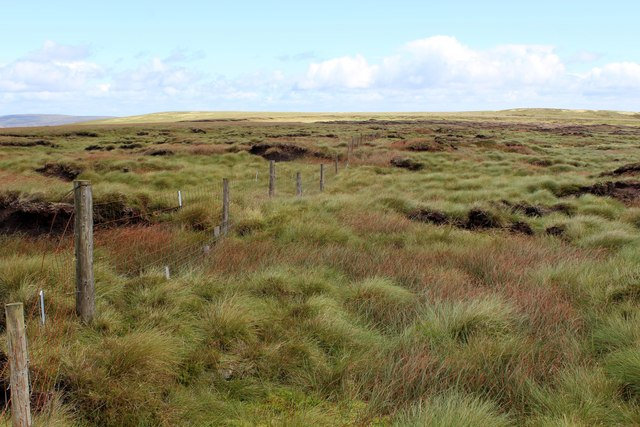 Fence crossing Peat Hags to the East of Lovely Seat