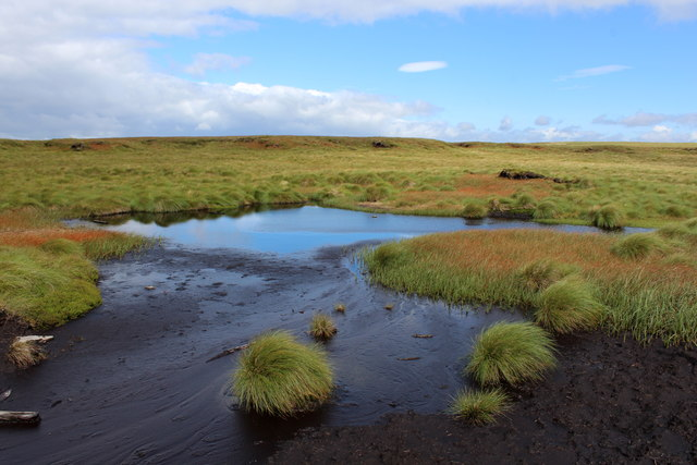 Turgid Peat Pool on Peter Rigg