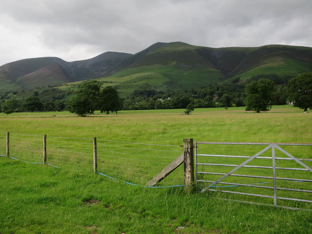Field below Skiddaw