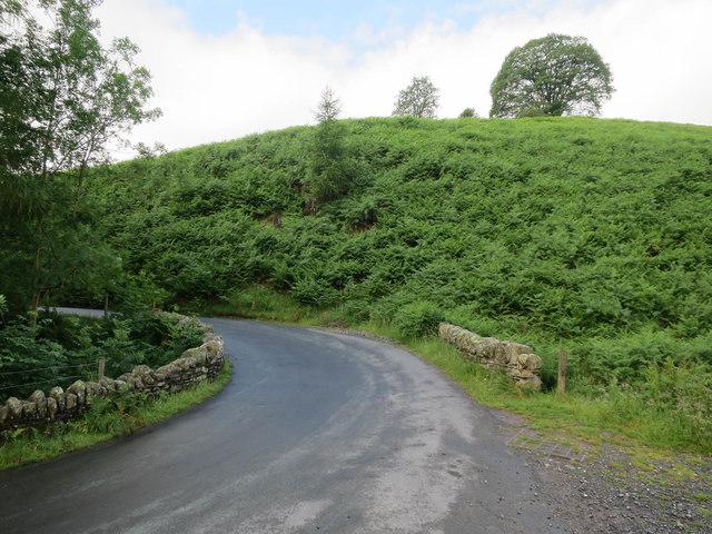 Road crossing Rigg Beck