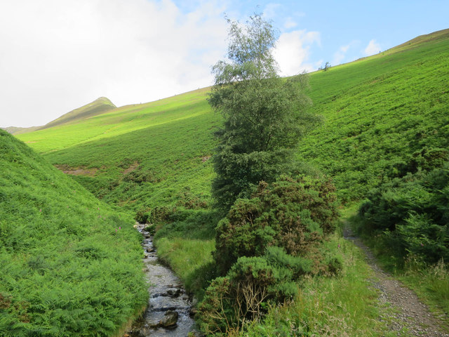 Path by Rigg Beck