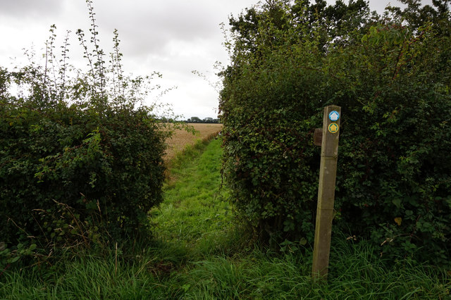 Howden 20 towards Featherbed Lane