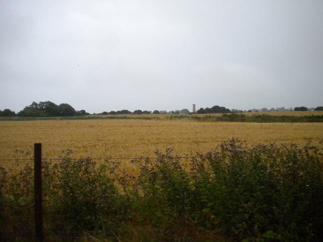 Fields north of New Romney