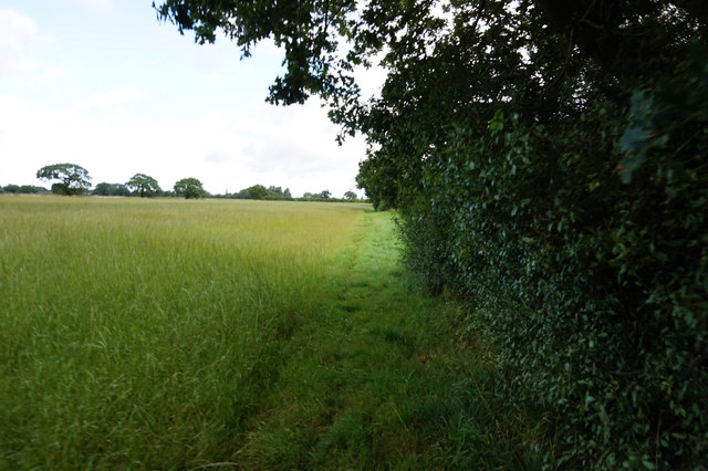 Path leading to Spaldington