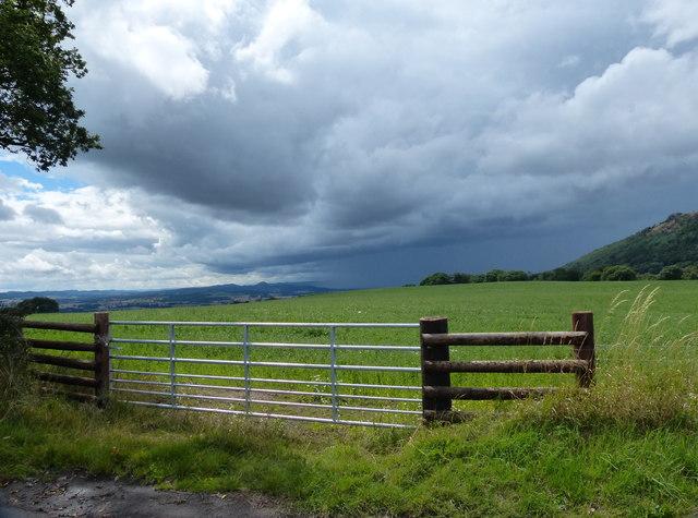 Gate and field near Wenlocks Wood
