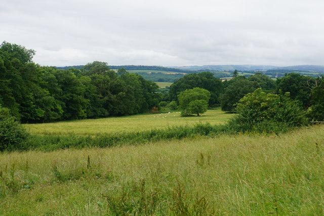 Farmland by West Bagborough