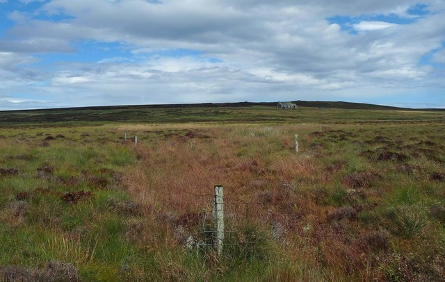Enclosure on moorland below Christian Hill, Caithness