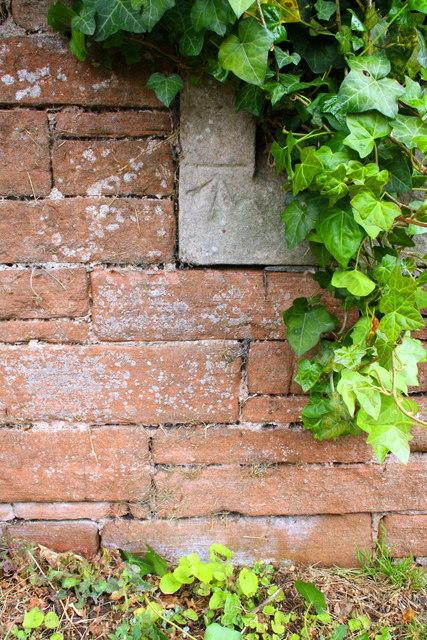 Benchmark on Beacon Edge wall