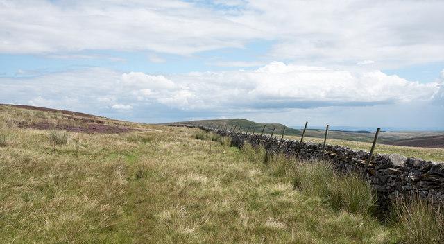 Thin track alongside wall