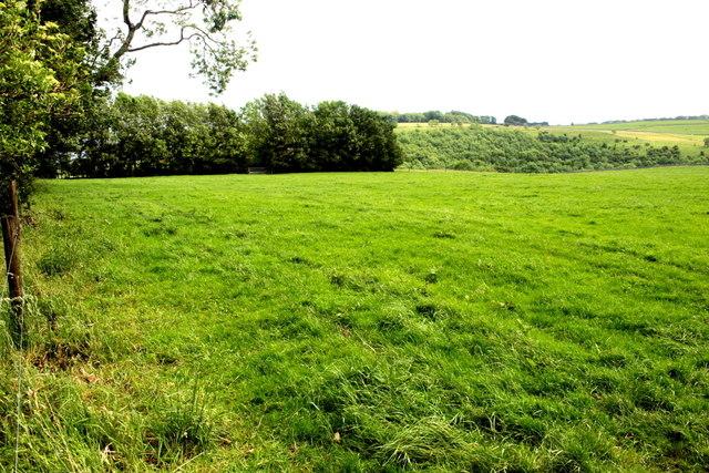 View Towards Lathkill Dale