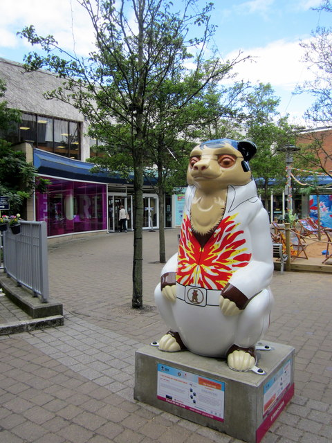 Birmingham Big Sleuth I Just Wanna Be Your Teddy Bear Bear
