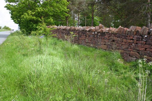 Dry stone wall beside Salkeld Road