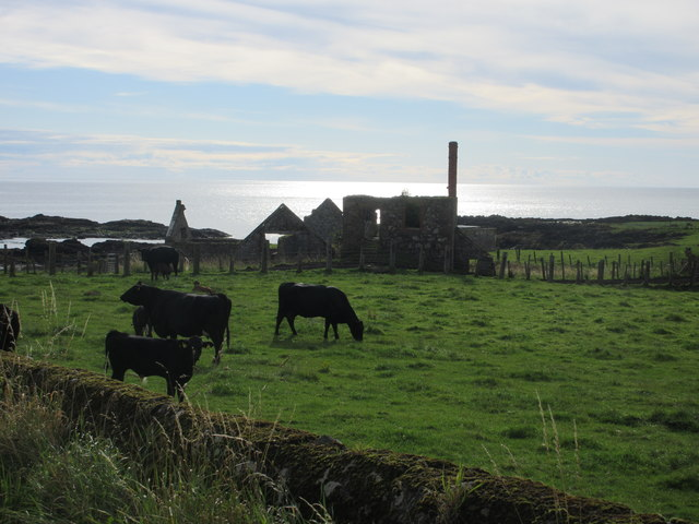 Ruins at Mains of Usan