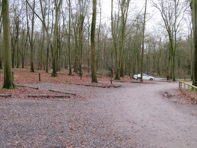 Car park by Forest Retreat reception