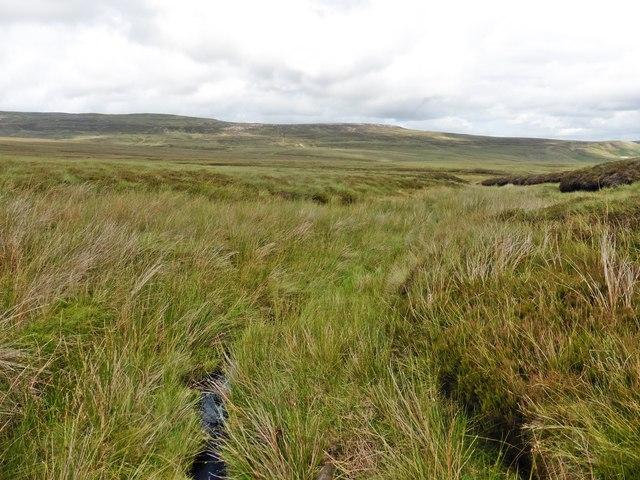 View towards Lune Moor
