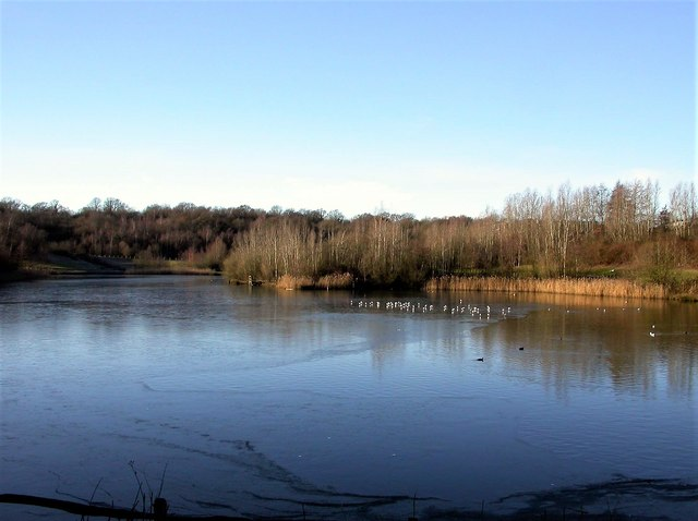Lake in winter in Southwater Country Park