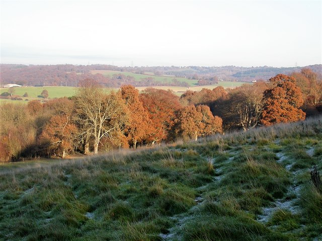 Frost in North Clays with Hoads Wood and the Brede Valley