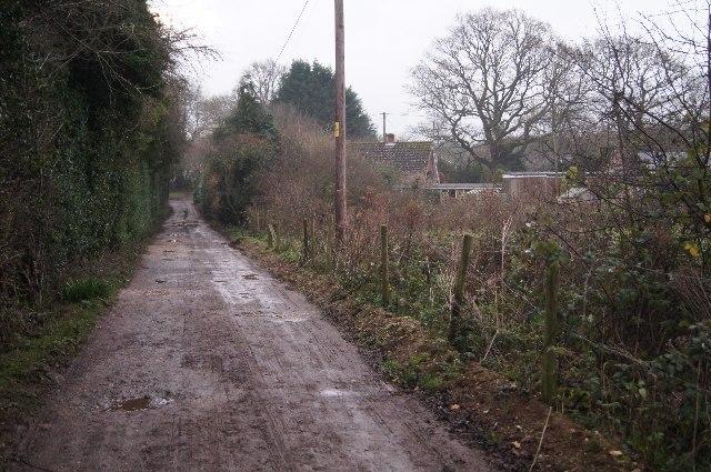 Bridleway towards Pardown