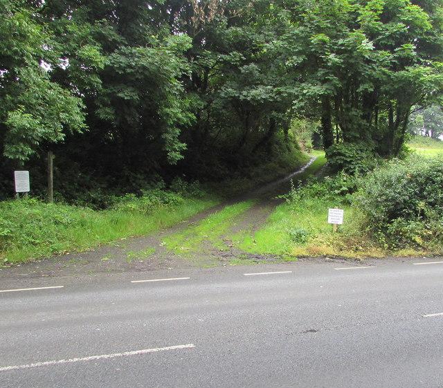 Sperricomb Lane, Tenby