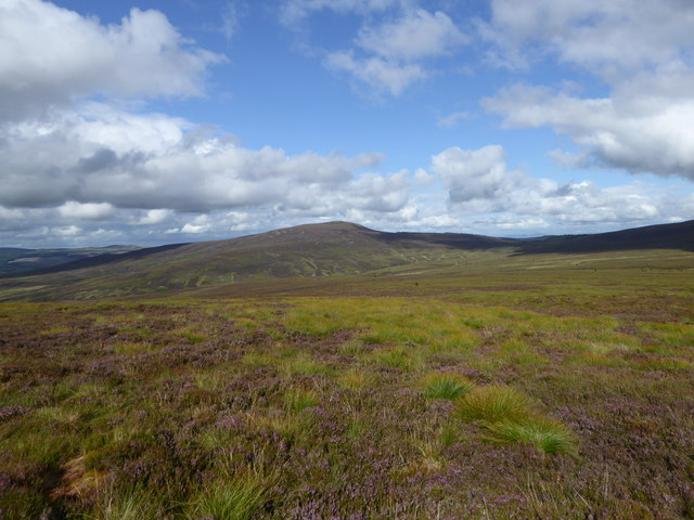 Moorland on Wardlaw Hill