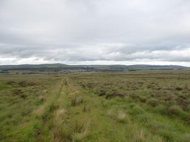 Moorland track north of Wardlaw Hill