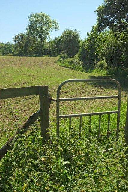 Path leaving Chedington Woods