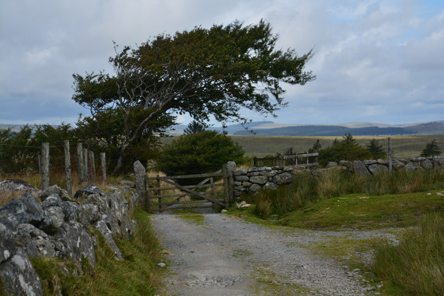 West Devon : Track