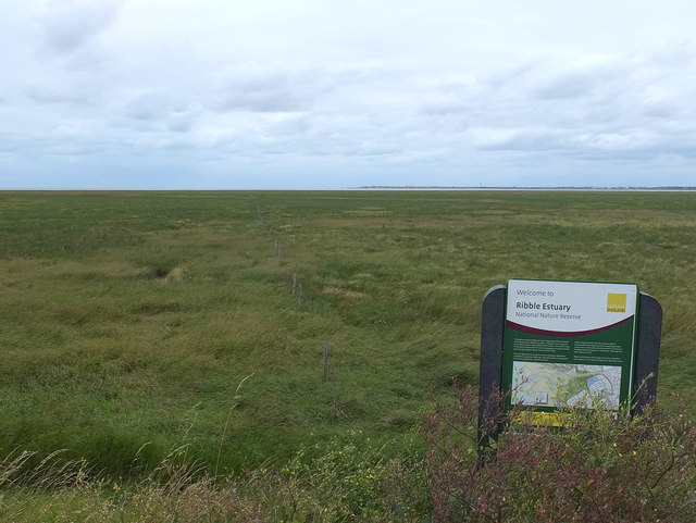 Crossens Marsh from Marine Drive