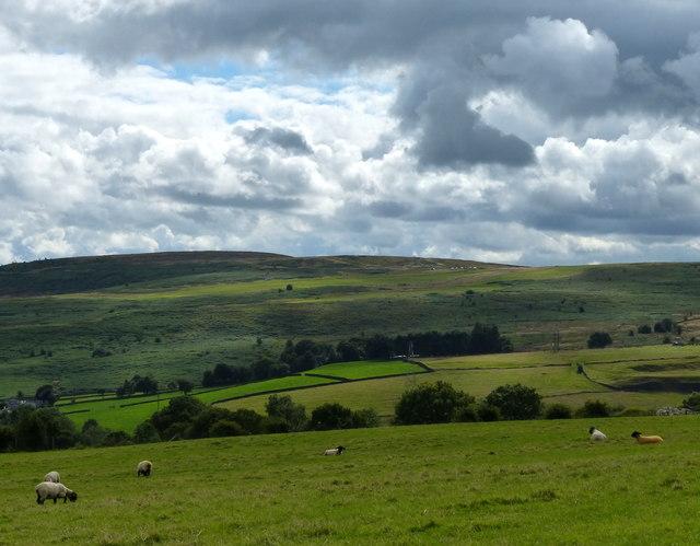 View to Baildon Moor
