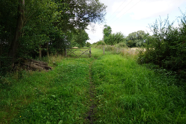 Rail trail towards Bubwith