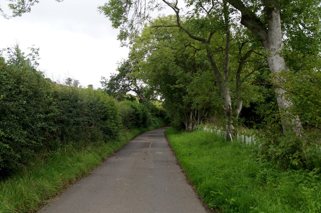 The road to Currie House, Borthwick