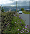 SE1042 : Otley Road descending towards East Morton by Mat Fascione