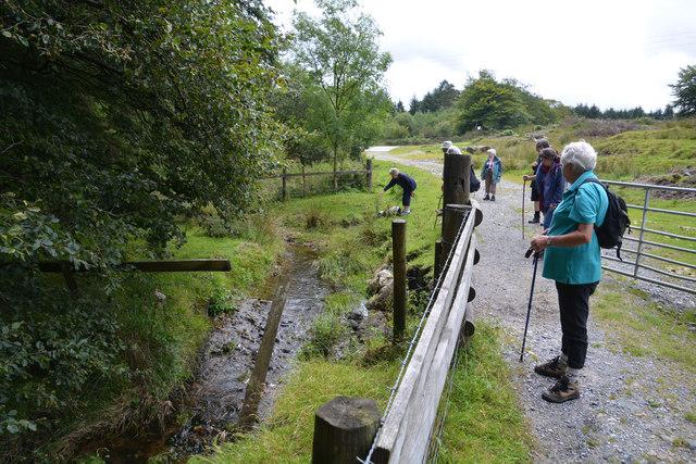 West Devon : Footpath & Stream