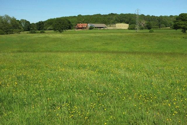 Romsey Farm