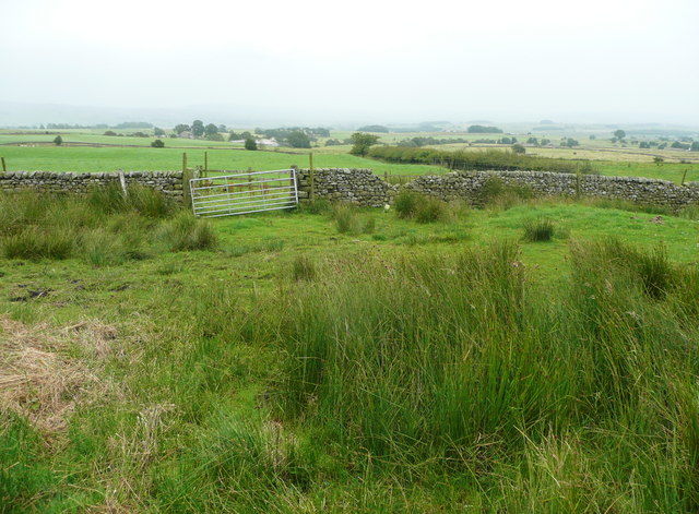 Gate on footpath from Heath Farm to Longtons Lane, Gisburn Forest