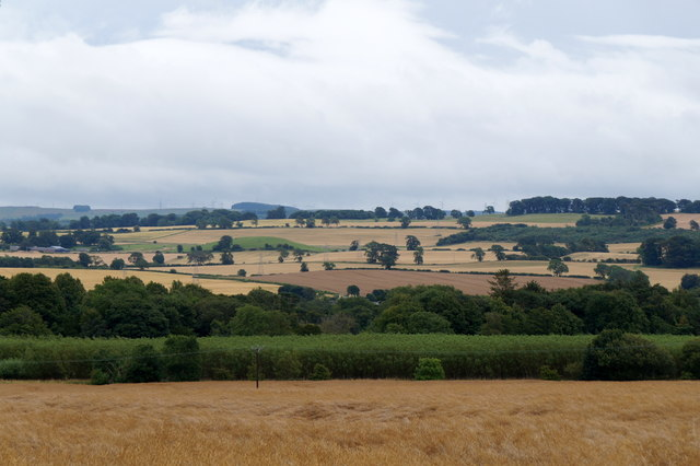Fields west of Pathhead