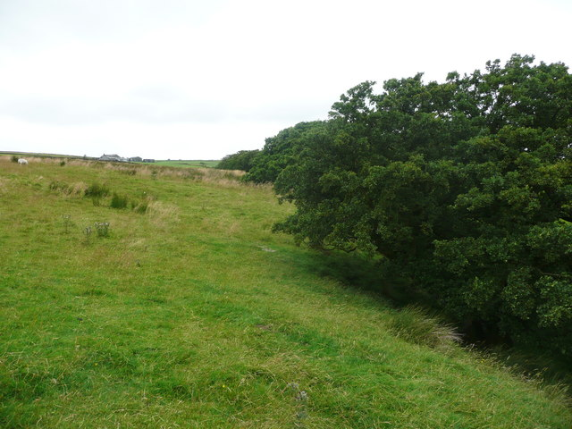 Footpath from Higher Road to Middle Brayshaw, Wigglesworth