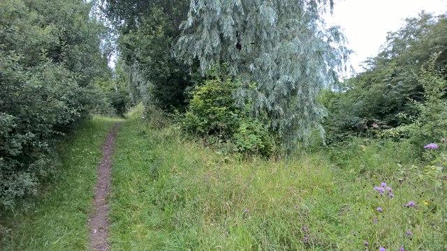 Path across Tween Bridge Moors