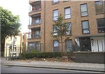 TQ3379 : Flats on Grange Road, Bermondsey by David Howard