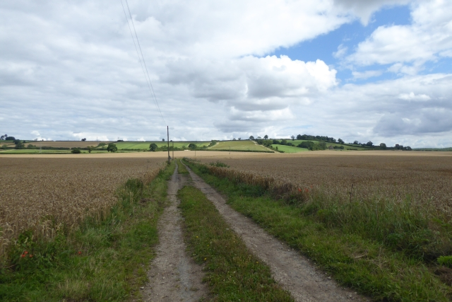 Track to Clay Hall and Hillside Farm