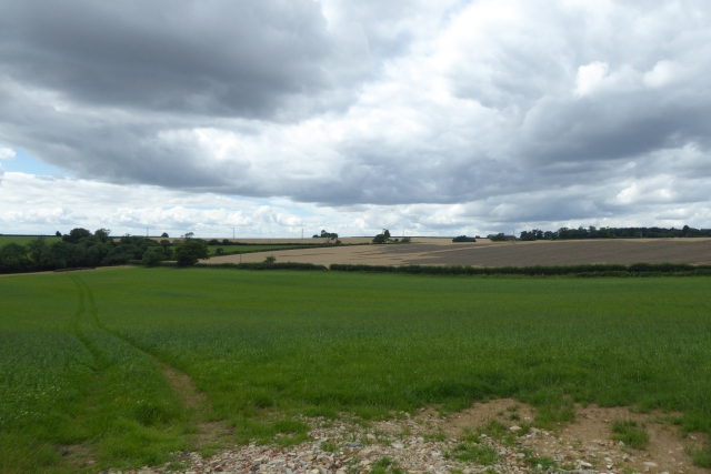 Fields above Crambe