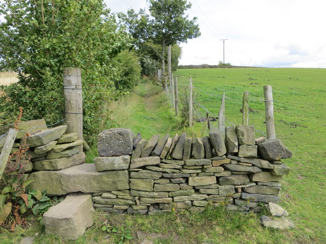 Field path about to cross a wall stile and become an enclosed path near Lepton