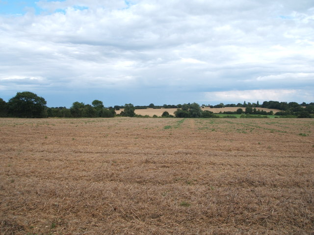 Farmland east of Radley Green Road