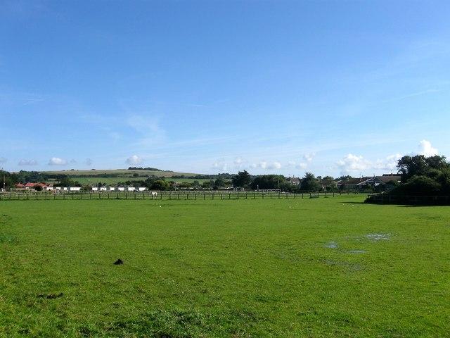 Mowed Mead