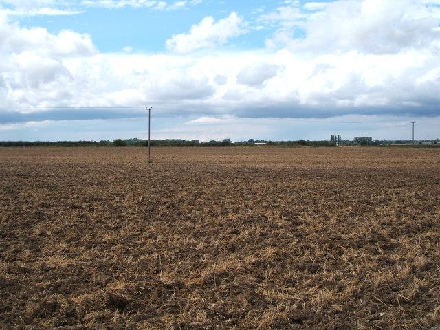 Field, Benedict Otes