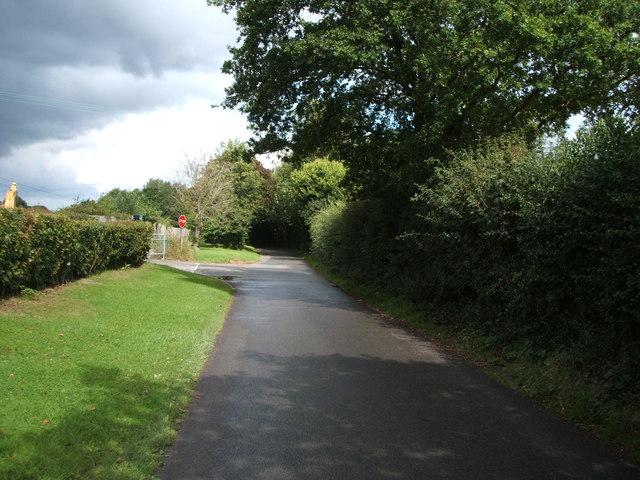 Cow Watering Lane
