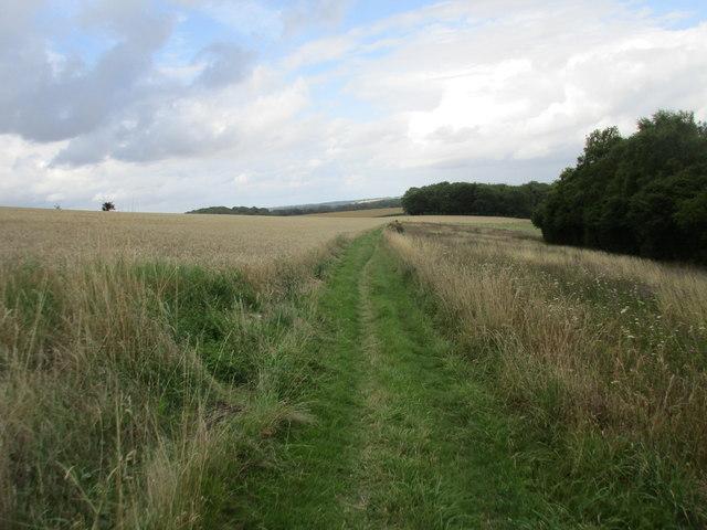 The Monarch's Way below Beacon Hill