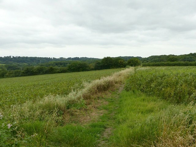 Footpath to Dale Abbey