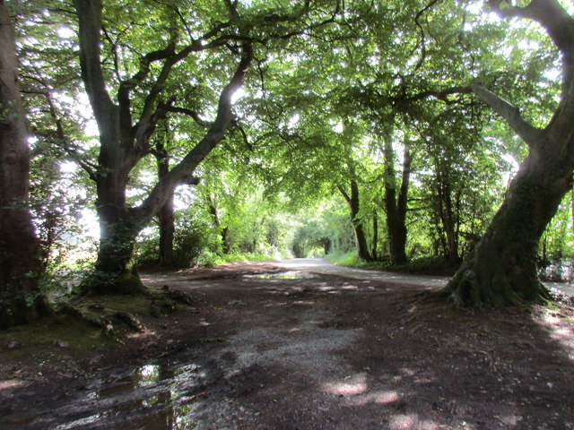 Junction of paths and roads at Beaconhill Beeches