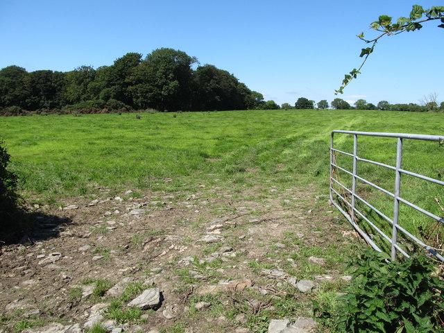 Grassland in the Quintin Castle Demsene